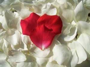Путь к настоящей любви: 7 непростых этапов отношений