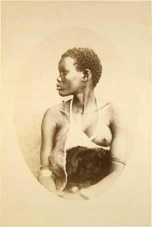 А вот у племени шиллуков, обитающего в Центральной Африке, есть традиция женить вождя на нескольких десятках красавиц.